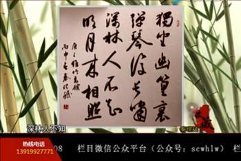 甘肃电视台《收藏》秦书理墨(竹里馆)