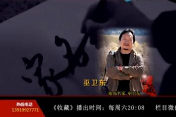 甘肃电视台《收藏》塞尚名家巫卫东