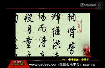 甘肃电视台《收藏》书法赏拍-于钟华